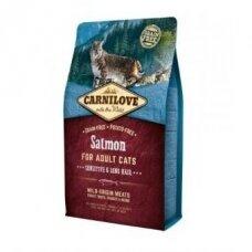 Pašaras katėms CARNILOVE Salmon Adult Cat Sensitive & Long Hair, 2 kg
